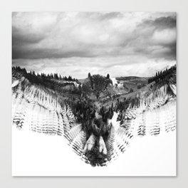 Owl Mid Flight Canvas Print