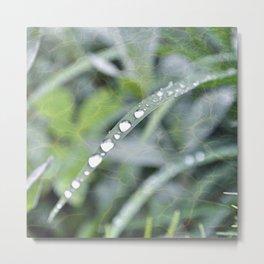 Watery Queue Metal Print