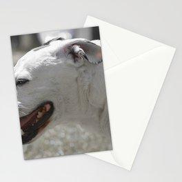 Stafford Mongrel White Dog Stationery Cards