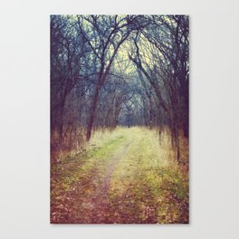 The Woods Are Lovely, Dark and Deep...  Canvas Print