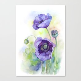 Watercolor blue poppy flowers Canvas Print