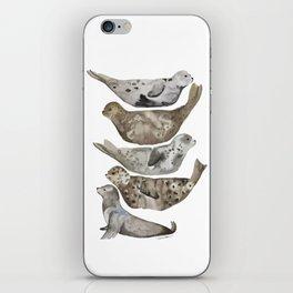 Seals of La Jolla iPhone Skin