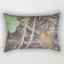 Exploring Rectangular Pillow