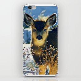 Blue Baby Deer in Winter Light by CheyAnne Sexton iPhone Skin