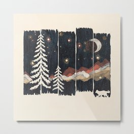 A Starry Night in the Mountains... Metal Print