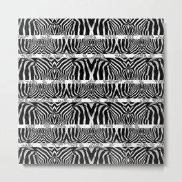 Zebra Stripe Pattern Metal Print