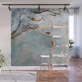 Eucalyptus tree bark texture 11 Wall Mural