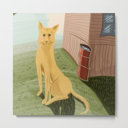 Yellow dog Metal Print