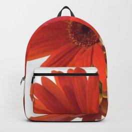 ORANGE GERBERAS Backpack