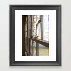 Nature Takes Over Framed Art Print