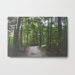 less traveled Metal Print