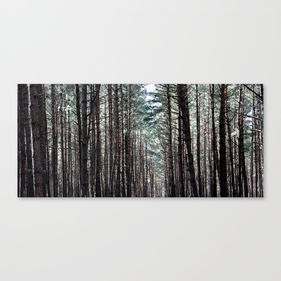 soul howling Canvas Print