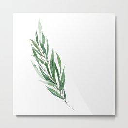 Eucalyptus branch in watercolor Metal Print