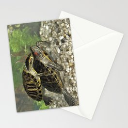 My turtles Stationery Cards