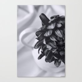 Whispered Beauty - Black and White Art Canvas Print