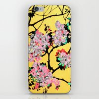 blossom iPhone & iPod Skins featuring Blossom by marlene holdsworth