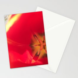 Red Flower Close Up Stationery Cards