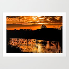 Silhouetted Canadian Geese taking a break in a pond in Ann Arbor, Michigan Art Print