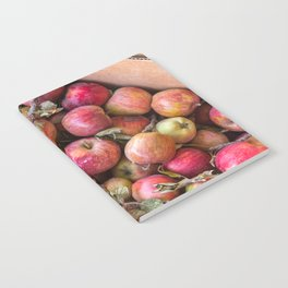 Pile of freshly picked organic farm apples with imperfections Notebook