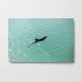 Wild Dolphin Metal Print