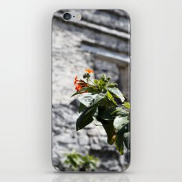 Touch of color in Tulum iPhone Skin