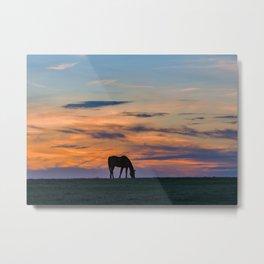 Grazing at sunset Metal Print