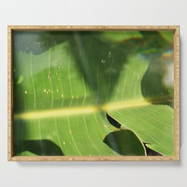 Bird of Paradise Leaf Serving Tray
