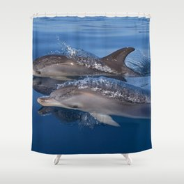 Beautiful Spotted dolphins Stenella frontalis Shower Curtain