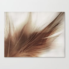 Feather Canvas Print
