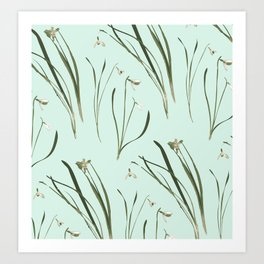 GALANTHUS IN MINT Art Print