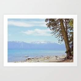 Tree by the lake Art Print