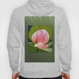 Lotus dream/Lotustraum Hoody
