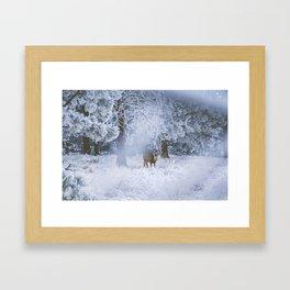 Deer in Frost Framed Art Print