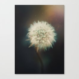 May nothing but hapiness come through your door Canvas Print