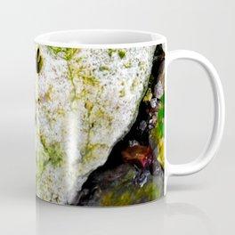 Plant fossil Coffee Mug
