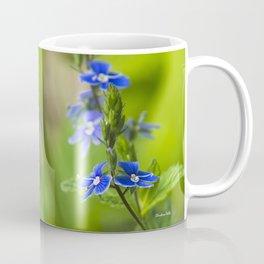 Blue Speedwell Flowers Coffee Mug