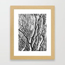 sleepy trees Framed Art Print