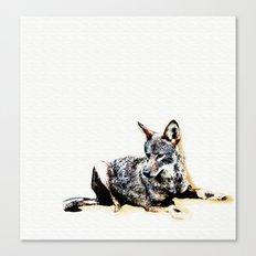 Wild Vermont Coyote Canvas Print