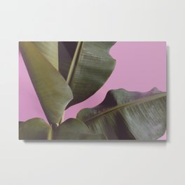 Tropical, Leaf, Plant, Modern, Wall Art Metal Print