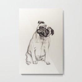 Pugg Metal Print