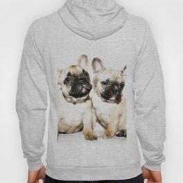 French Bulldogs Hoody
