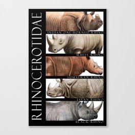 Rhinos of the World Canvas Print