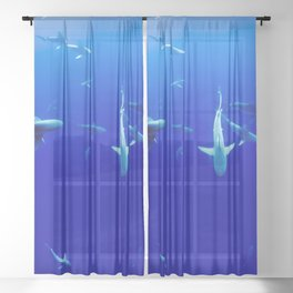 GROUP OF SHARKS UNDER BODY OF WATER Sheer Curtain