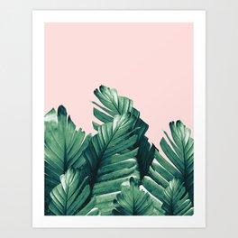 Blush Banana Leaves Dream #3 #tropical #decor #art #society6 Art Print
