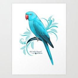 Bue Indian Ringneck Parrot Art Print