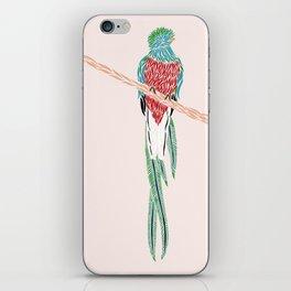 Quetzal iPhone Skin