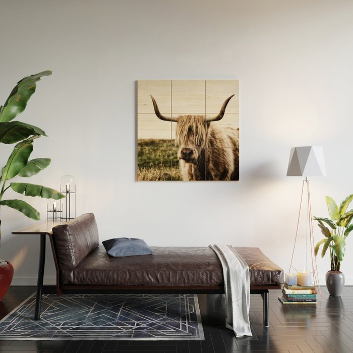 Highland Cow - color Wood Wall Art