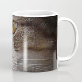 Spotlight Tabby Cat Face in Shadow Textured Photograph Coffee Mug