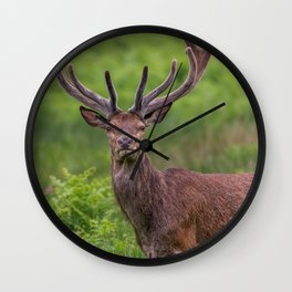 Proud Stag Wall Clock