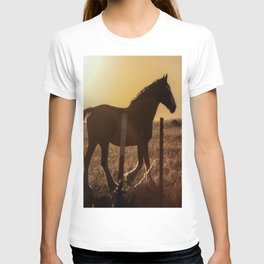 Wyoming Clydesdale T-shirt
